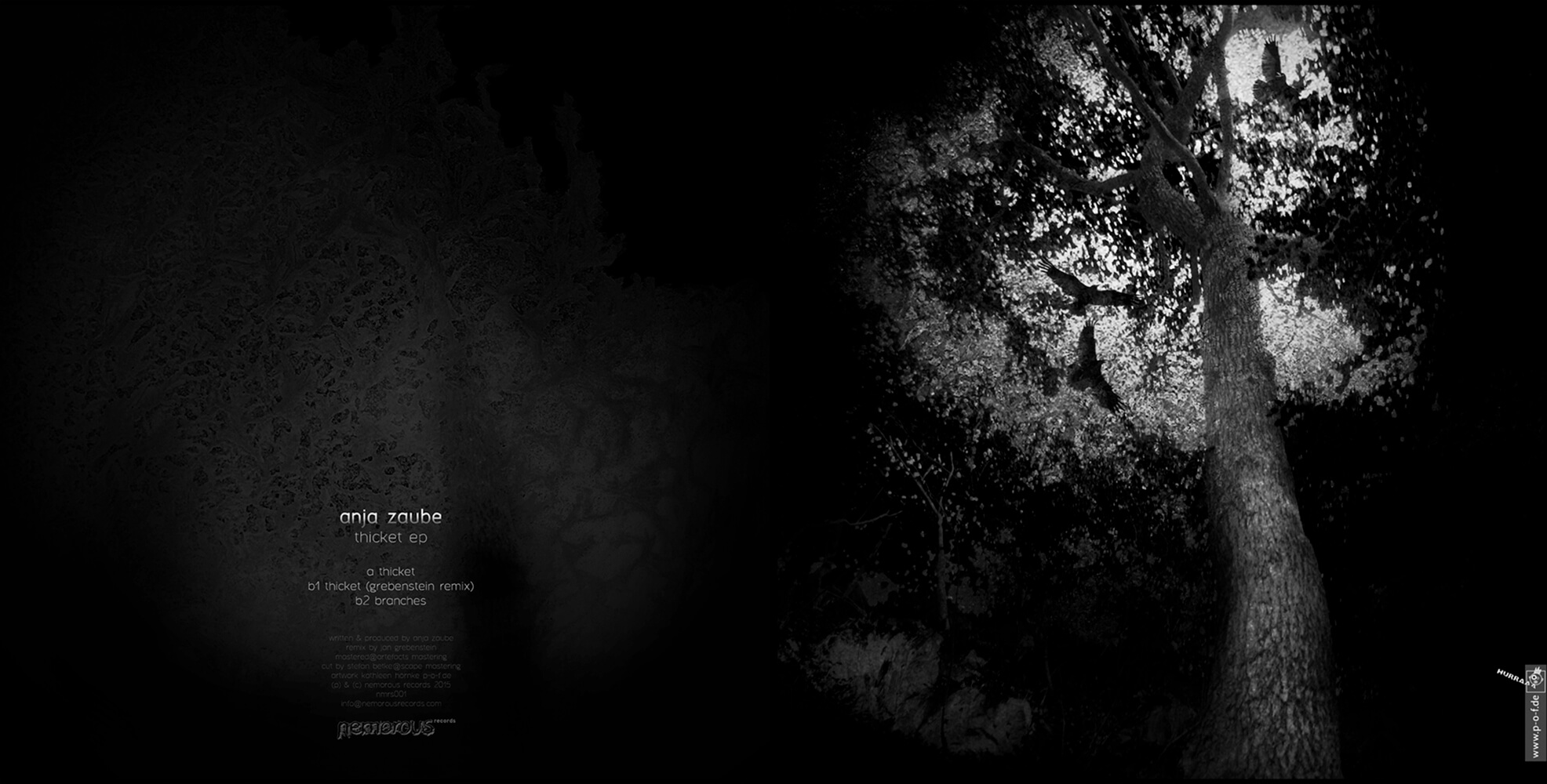 erstes Plattencover zu Anja Zaube auf dem Label Nemorous