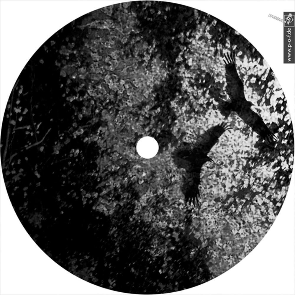 erstes Plattencover/-label zu Anja Zaube auf dem Label Nemorous