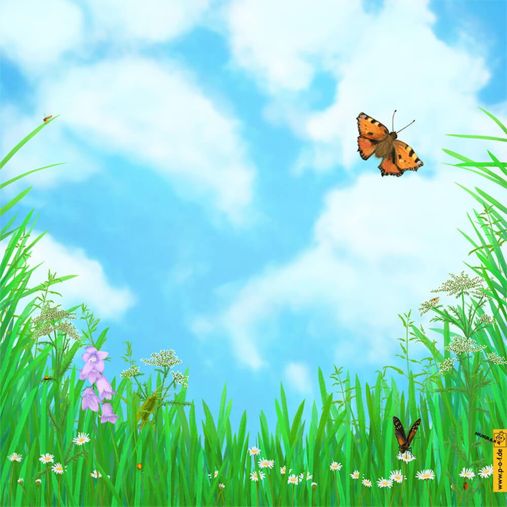 du liegst im Gras und fühlst den Frühling