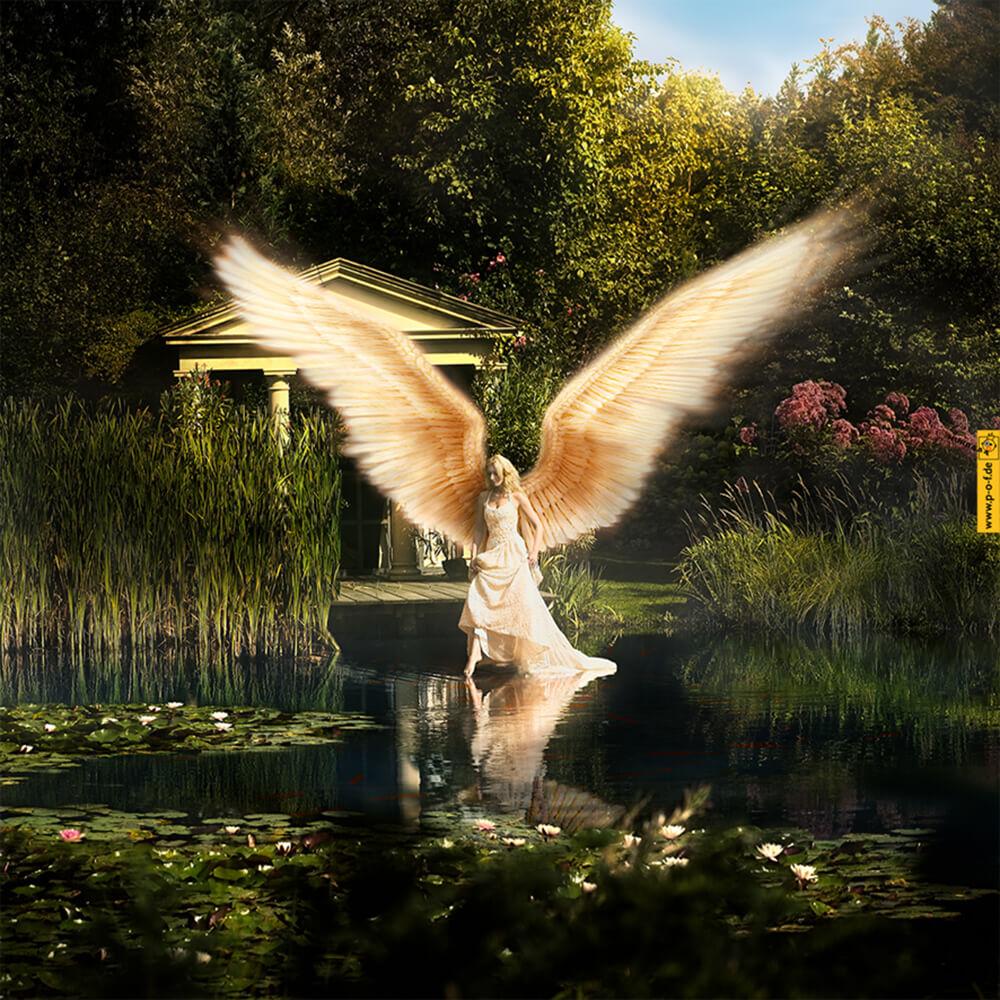 Engel geht übers Wasser